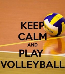 4395cd91b9141b9a5ec3751d8cec372c--volleyball-games-volleyball-quotes